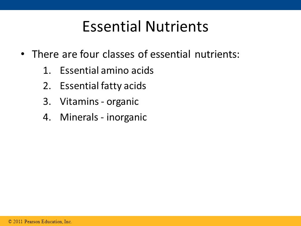 Essential Nutrients There are four classes of essential nutrients: 1.Essential amino acids 2.Essential fatty acids 3.Vitamins - organic 4.Minerals - i