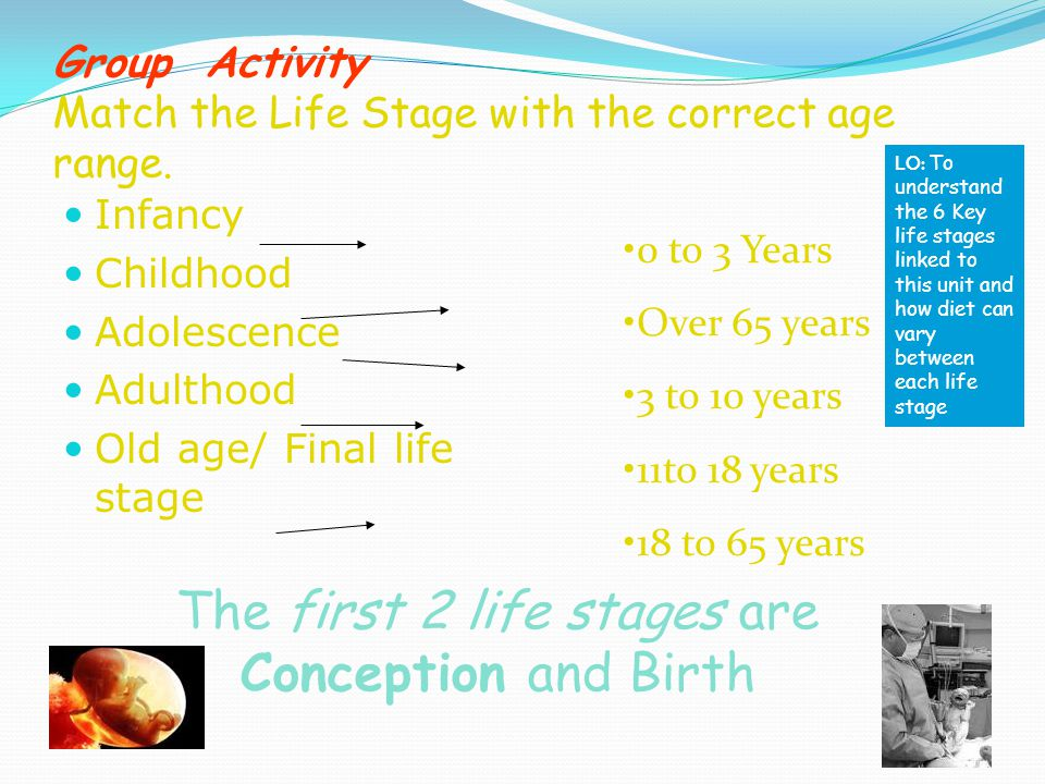 Group Activity Match the Life Stage with the correct age range.