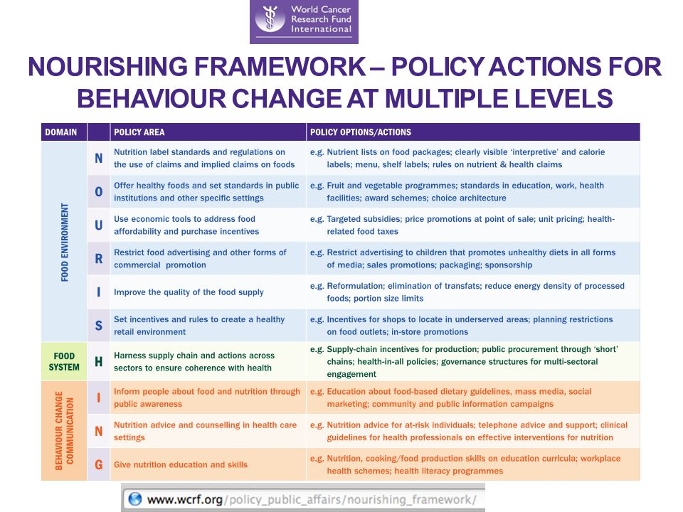 NOURISHING FRAMEWORK – POLICY ACTIONS FOR BEHAVIOUR CHANGE AT MULTIPLE LEVELS