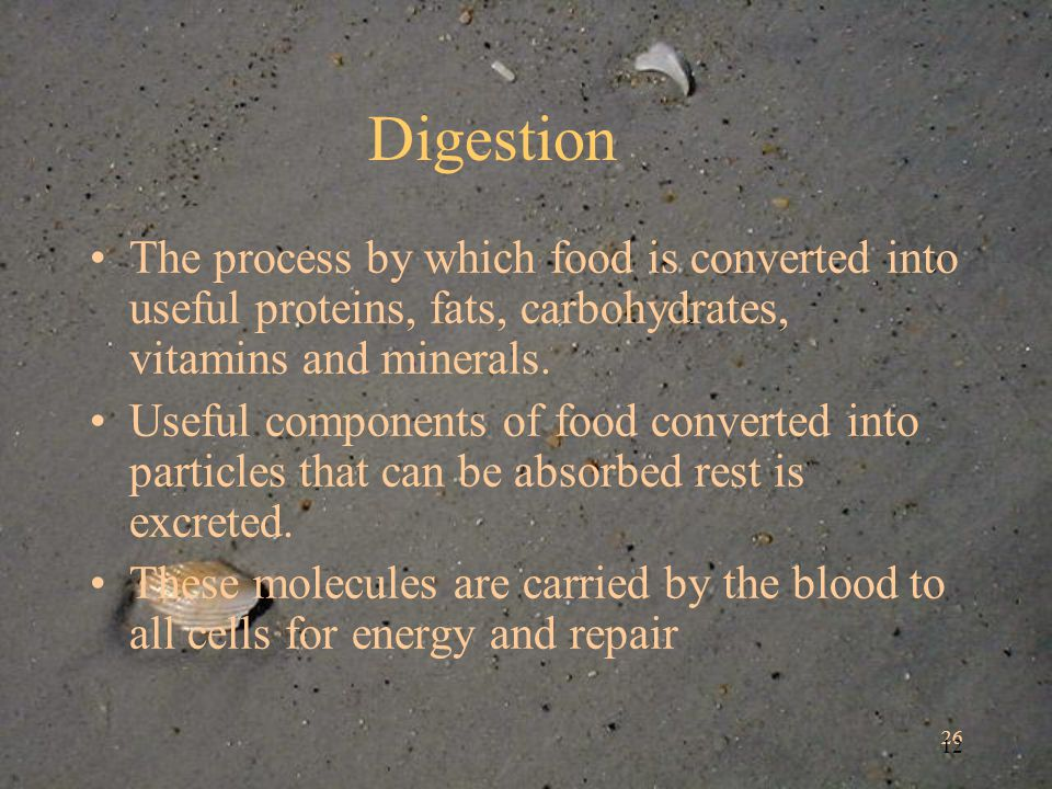 26 12 Digestion The process by which food is converted into useful proteins, fats, carbohydrates, vitamins and minerals.