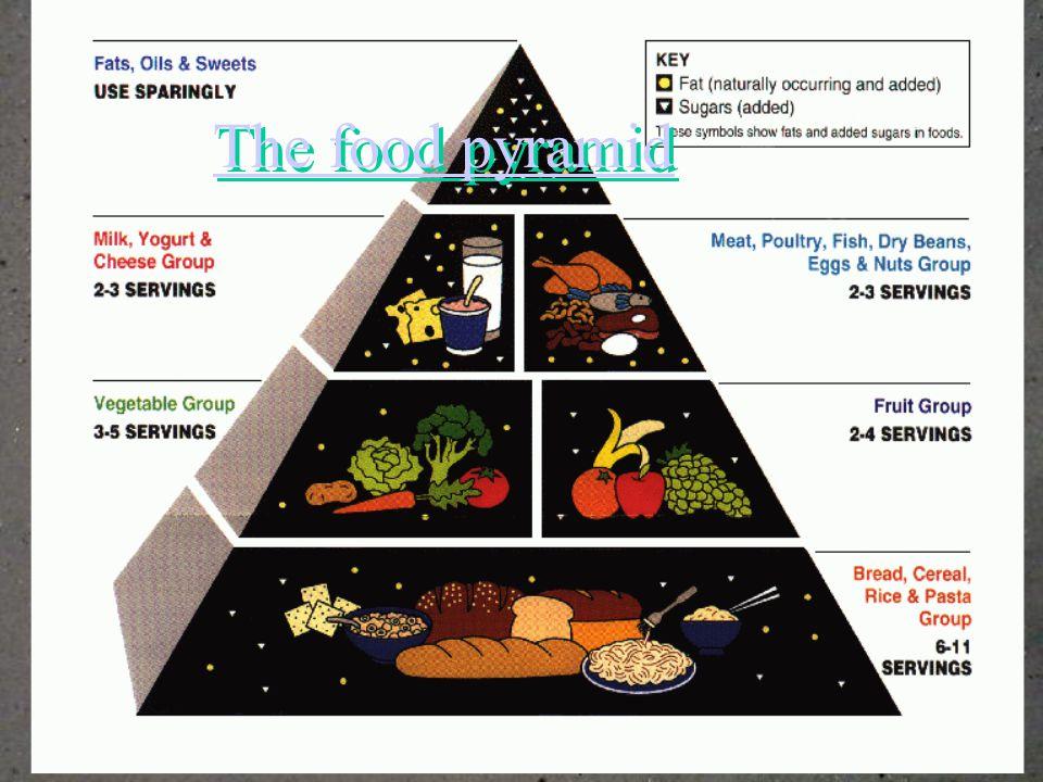 40 21 The food pyramid