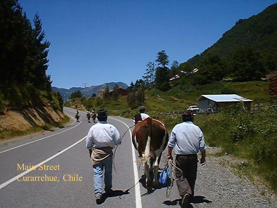 52 Main Street Curarrehue, Chile