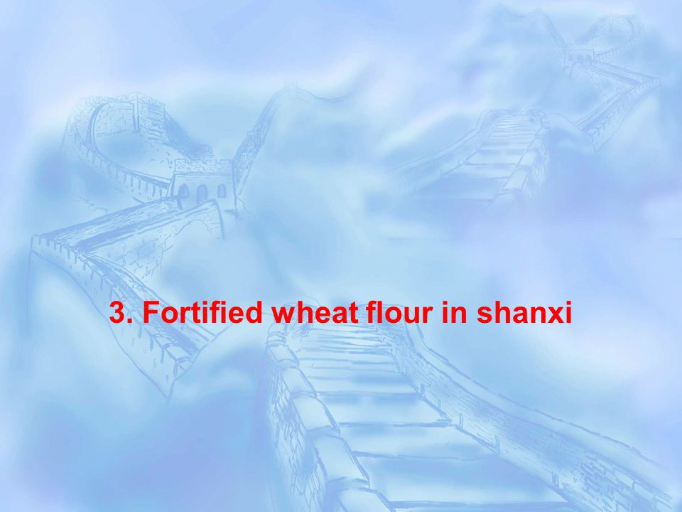 3. Fortified wheat flour in shanxi