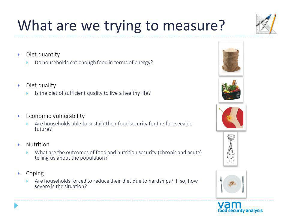 What are we trying to measure. Diet quantity Do households eat enough food in terms of energy.