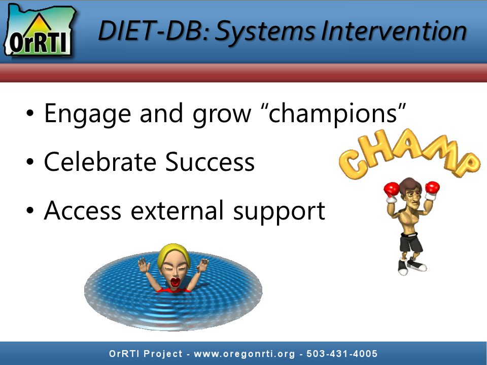 DIET-DB: Systems Intervention Engage and grow champions Celebrate Success Access external support