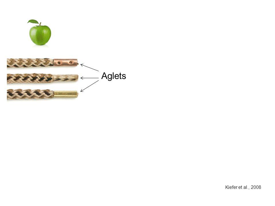 Aglets