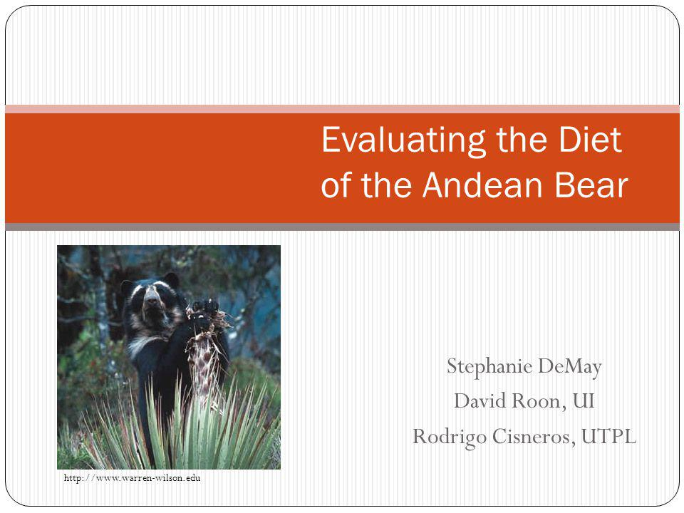 Stephanie DeMay David Roon, UI Rodrigo Cisneros, UTPL Evaluating the Diet of the Andean Bear http://www.warren-wilson.edu
