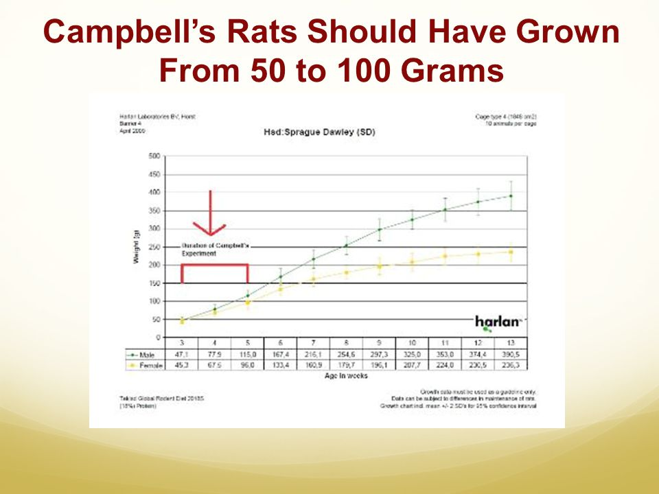 Campbells Rats Should Have Grown From 50 to 100 Grams