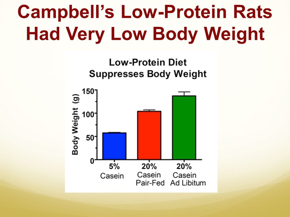 Campbells Low-Protein Rats Had Very Low Body Weight