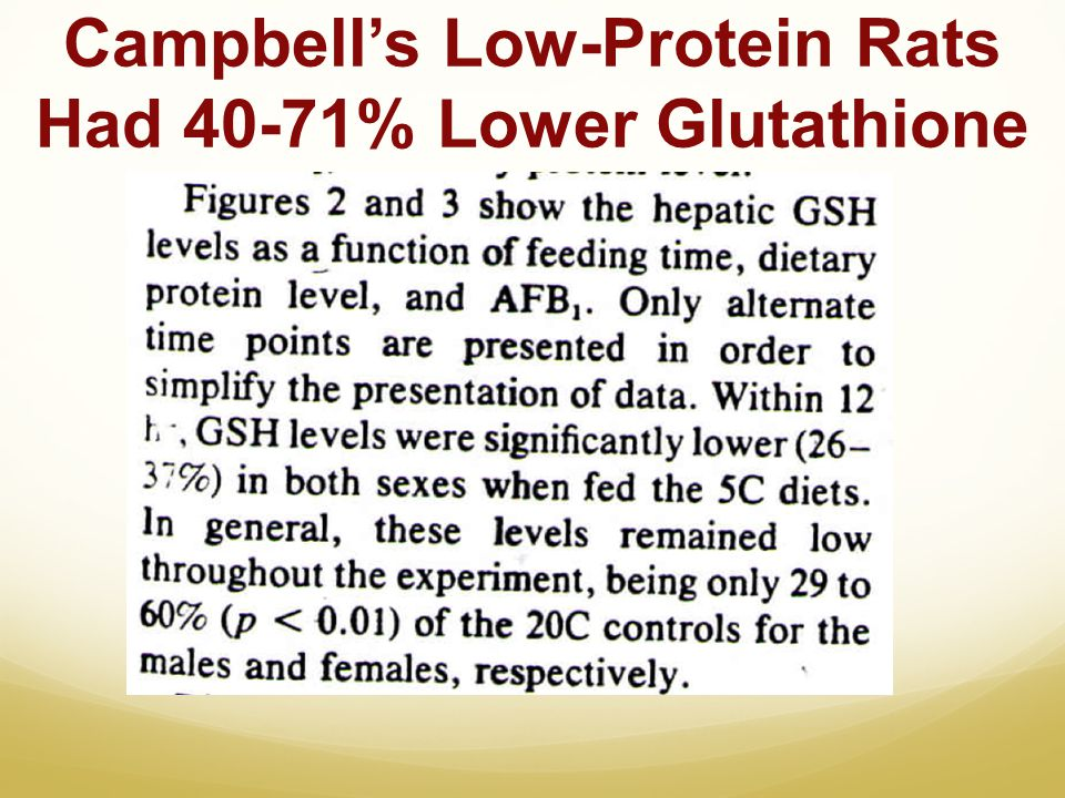 Campbells Low-Protein Rats Had 40-71% Lower Glutathione