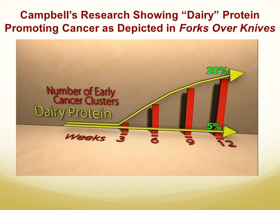 Campbells Research Showing Dairy Protein Promoting Cancer as Depicted in Forks Over Knives