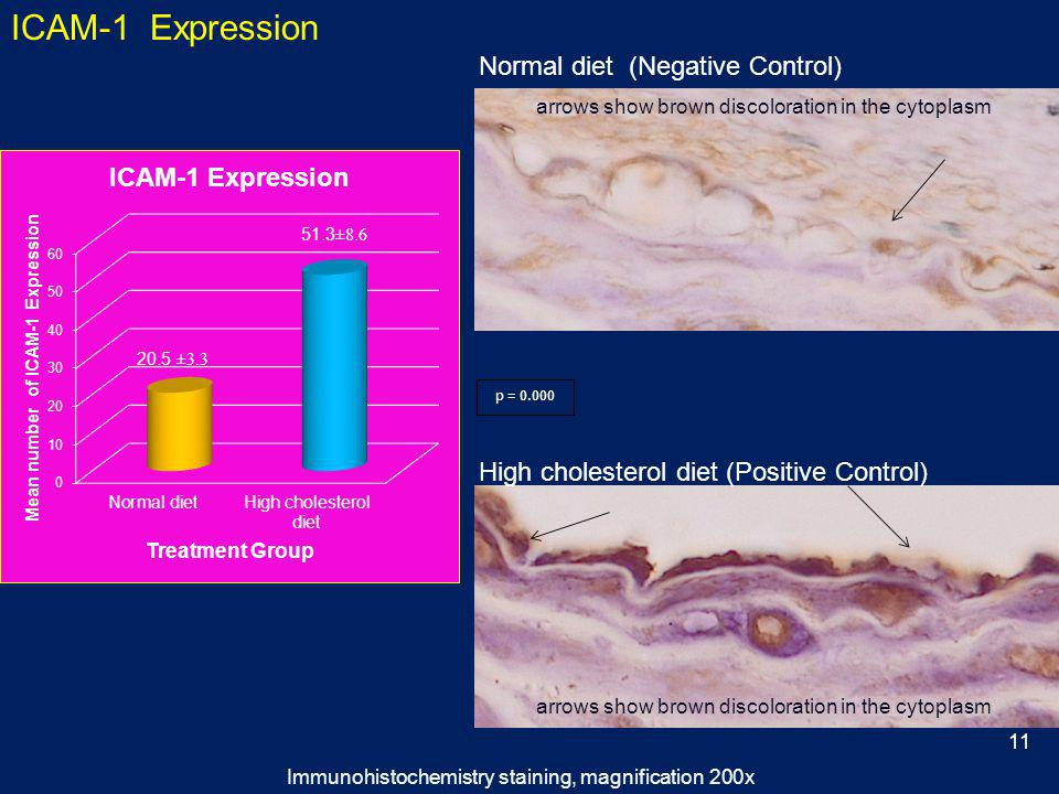 High cholesterol diet (Positive Control) Normal diet (Negative Control) ICAM-1 Expression arrows show brown discoloration in the cytoplasm p = 0.000 Immunohistochemistry staining, magnification 200x 11