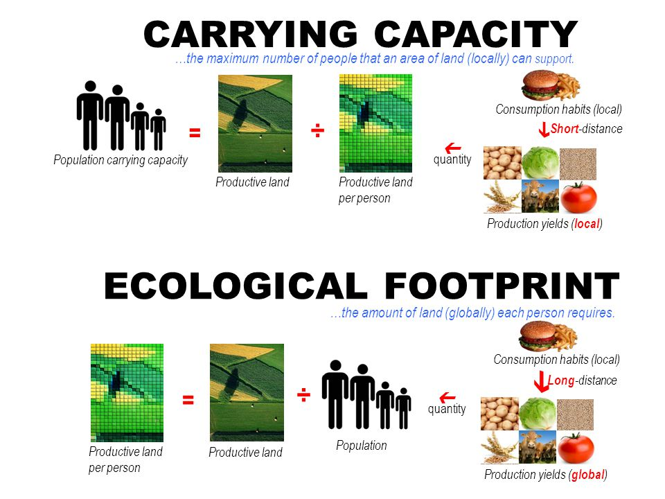 CARRYING CAPACITY …the maximum number of people that an area of land (locally) can support.