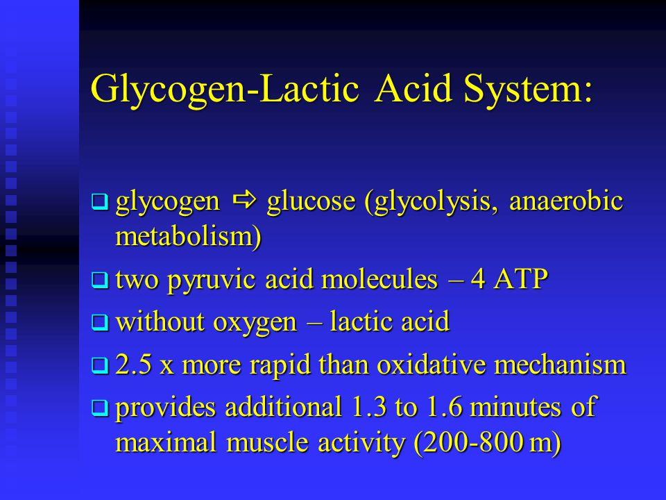 Glycogen-Lactic Acid System: glycogen glucose (glycolysis, anaerobic metabolism) glycogen glucose (glycolysis, anaerobic metabolism) two pyruvic acid