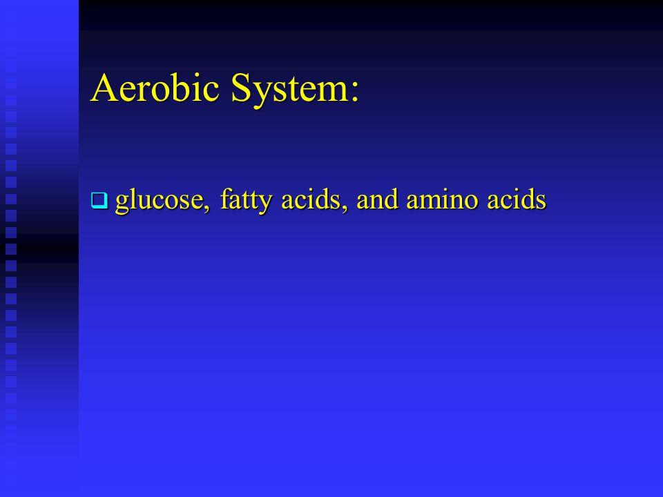 Aerobic System: glucose, fatty acids, and amino acids glucose, fatty acids, and amino acids