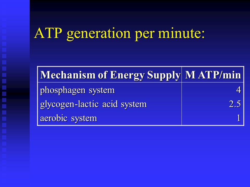 ATP generation per minute: Mechanism of Energy Supply M ATP/min phosphagen system glycogen-lactic acid system aerobic system 4 442.52.511442.52.5111