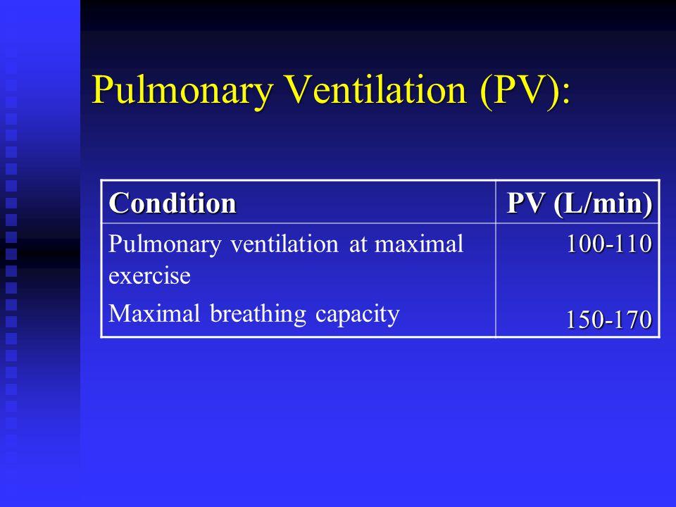 Pulmonary Ventilation (PV): Condition PV (L/min) Pulmonary ventilation at maximal exercise Maximal breathing capacity100-110150-170