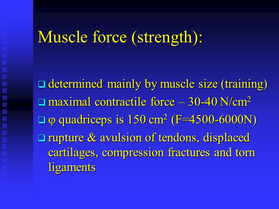 Muscle force (strength): determined mainly by muscle size (training) determined mainly by muscle size (training) maximal contractile force – 30-40 N/c