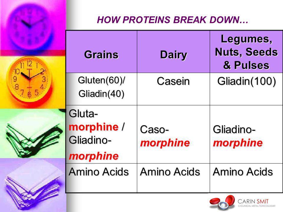 GrainsDairy Legumes, Nuts, Seeds & Pulses Gluten(60)/Gliadin(40)CaseinGliadin(100) Gluta- morphine / Gliadino- morphine Caso- morphine Gliadino- morphine Amino Acids HOW PROTEINS BREAK DOWN…