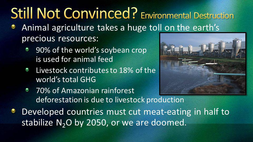 Animal agriculture takes a huge toll on the earths precious resources: 90% of the worlds soybean crop is used for animal feed Livestock contributes to 18% of the worlds total GHG 70% of Amazonian rainforest deforestation is due to livestock production Developed countries must cut meat-eating in half to stabilize N 2 O by 2050, or we are doomed.