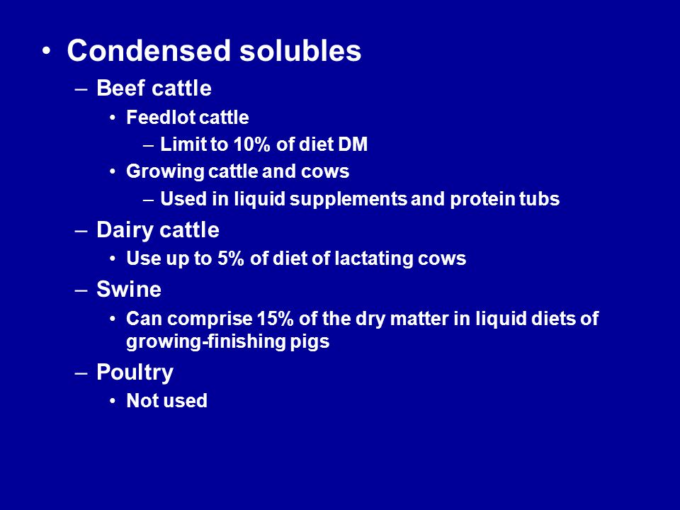 Condensed solubles –Beef cattle Feedlot cattle –Limit to 10% of diet DM Growing cattle and cows –Used in liquid supplements and protein tubs –Dairy ca