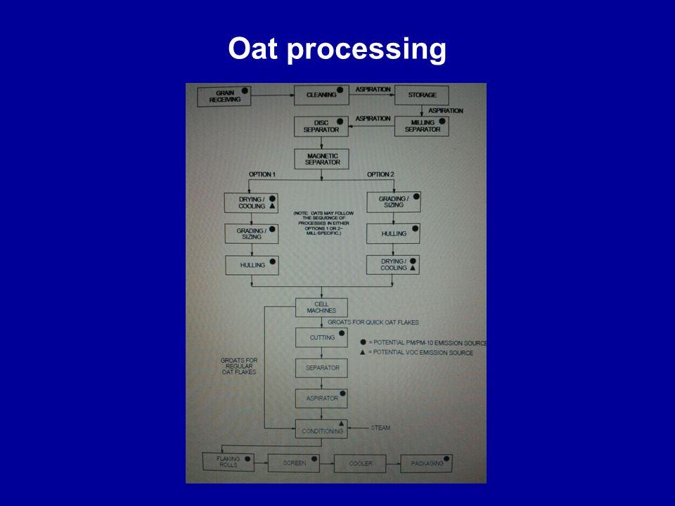 Oat processing