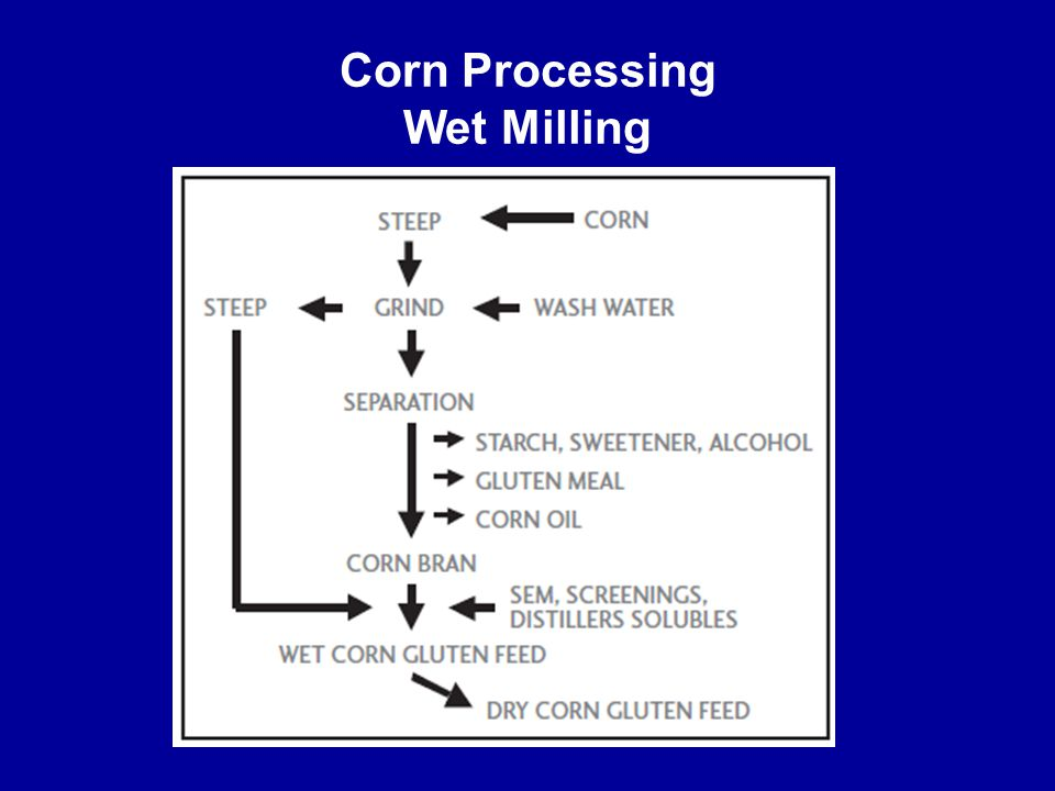 Corn Processing Wet Milling