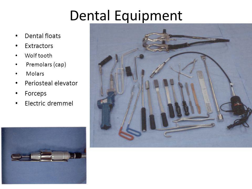 Dental Equipment Dental floats Extractors Wolf tooth Premolars (cap) Molars Periosteal elevator Forceps Electric dremmel