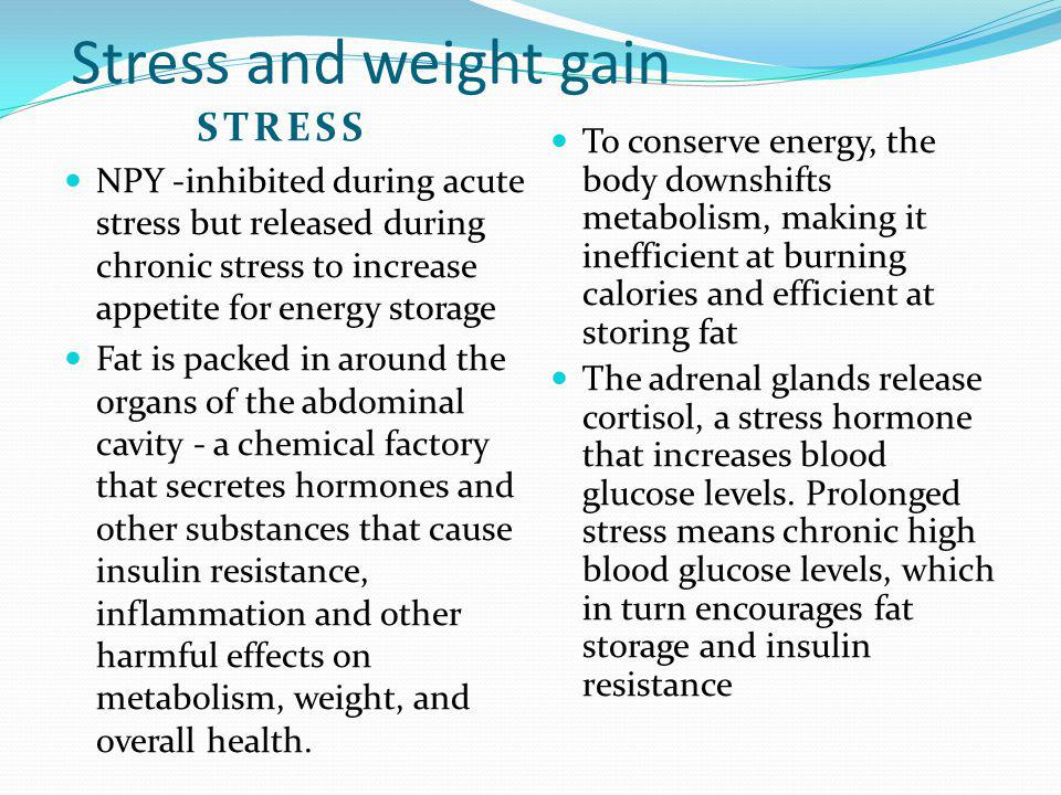 Stress and weight gain STRESS NPY -inhibited during acute stress but released during chronic stress to increase appetite for energy storage Fat is pac