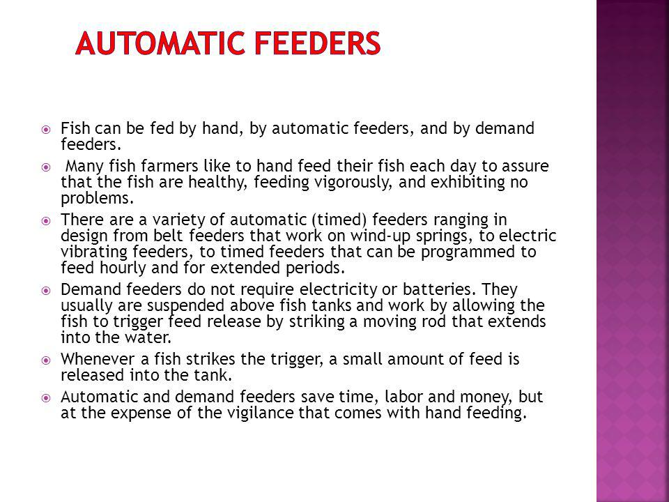 Fish can be fed by hand, by automatic feeders, and by demand feeders.