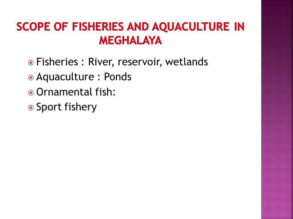 Fisheries : River, reservoir, wetlands Aquaculture : Ponds Ornamental fish: Sport fishery