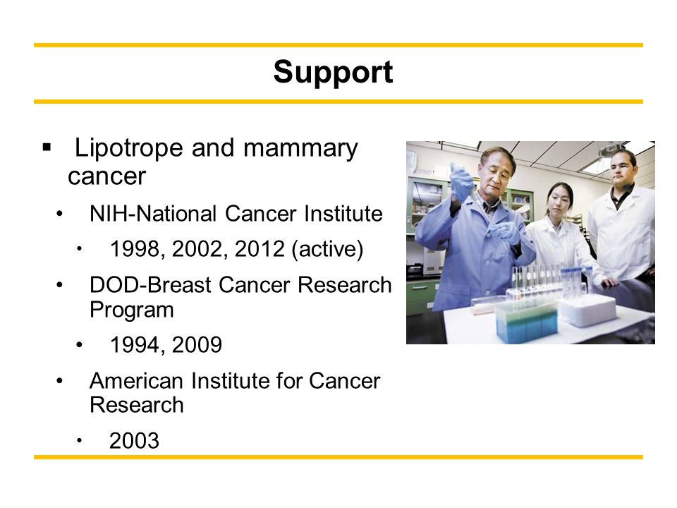 Support Lipotrope and mammary cancer NIH-National Cancer Institute 1998, 2002, 2012 (active) DOD-Breast Cancer Research Program 1994, 2009 American Institute for Cancer Research 2003