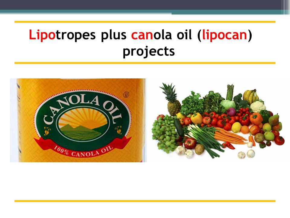 Lipotropes plus canola oil (lipocan) projects