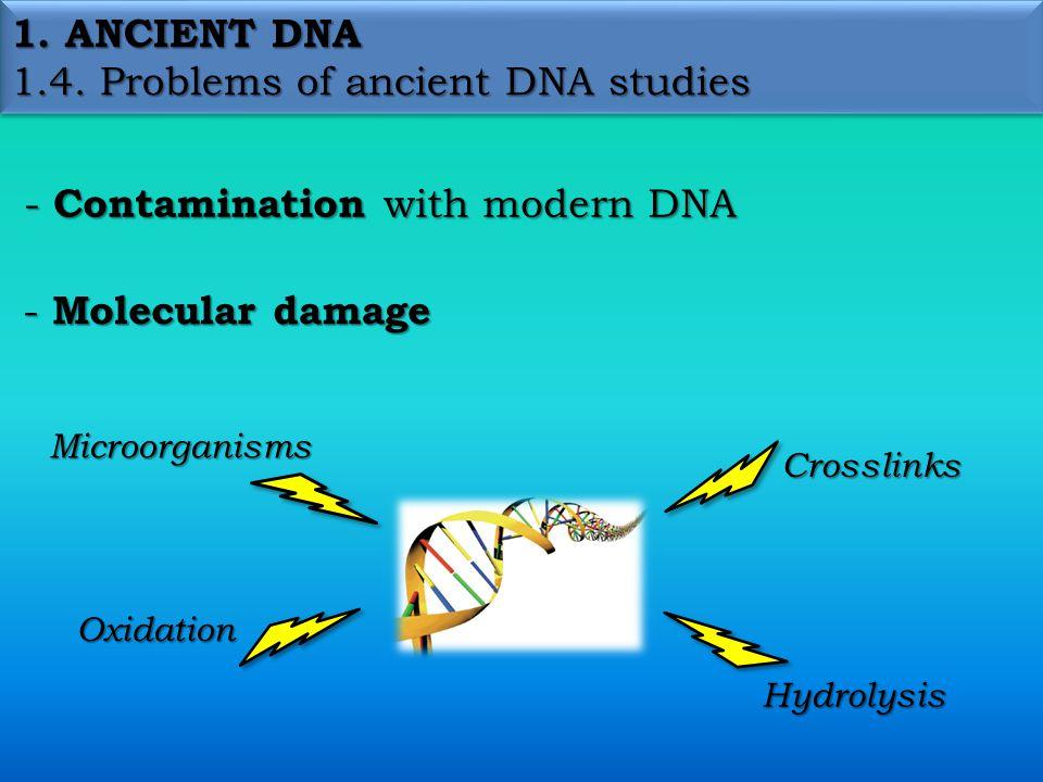 1.ANCIENT DNA 1.6.