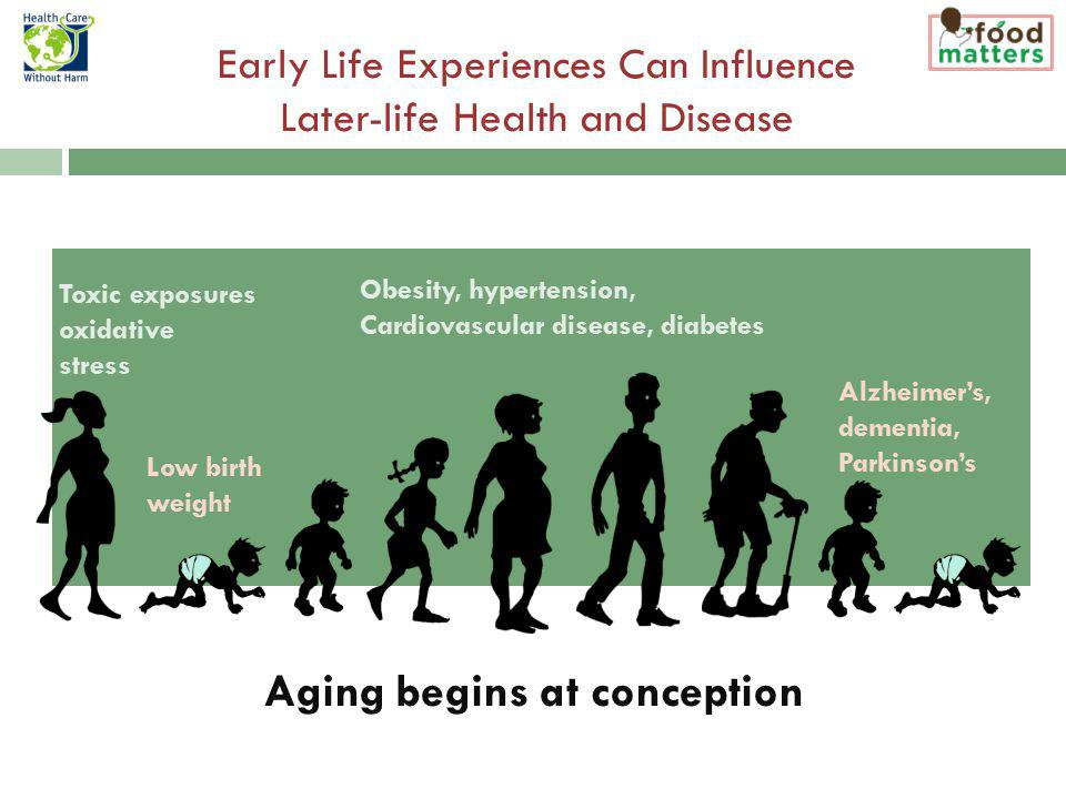Toxic exposures oxidative stress Obesity, hypertension, Cardiovascular disease, diabetes Alzheimers, dementia, Parkinsons Low birth weight Early Life Experiences Can Influence Later-life Health and Disease Aging begins at conception