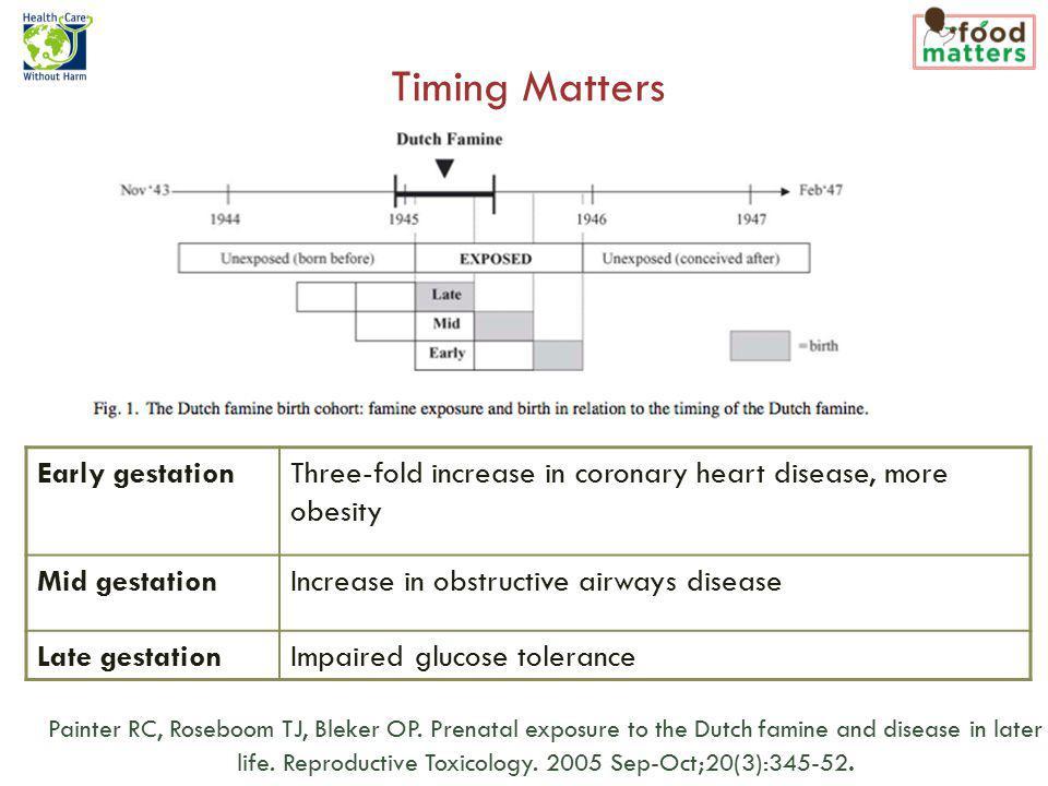 Timing Matters Painter RC, Roseboom TJ, Bleker OP.