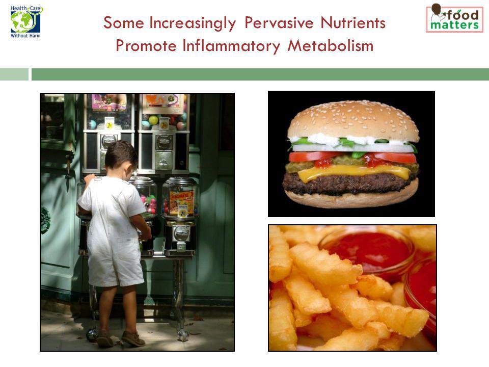 Some Increasingly Pervasive Nutrients Promote Inflammatory Metabolism