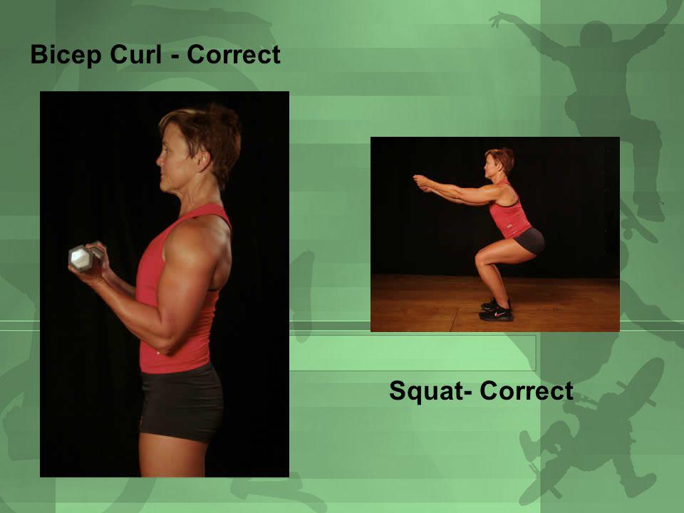 Bicep Curl - Correct Squat- Correct