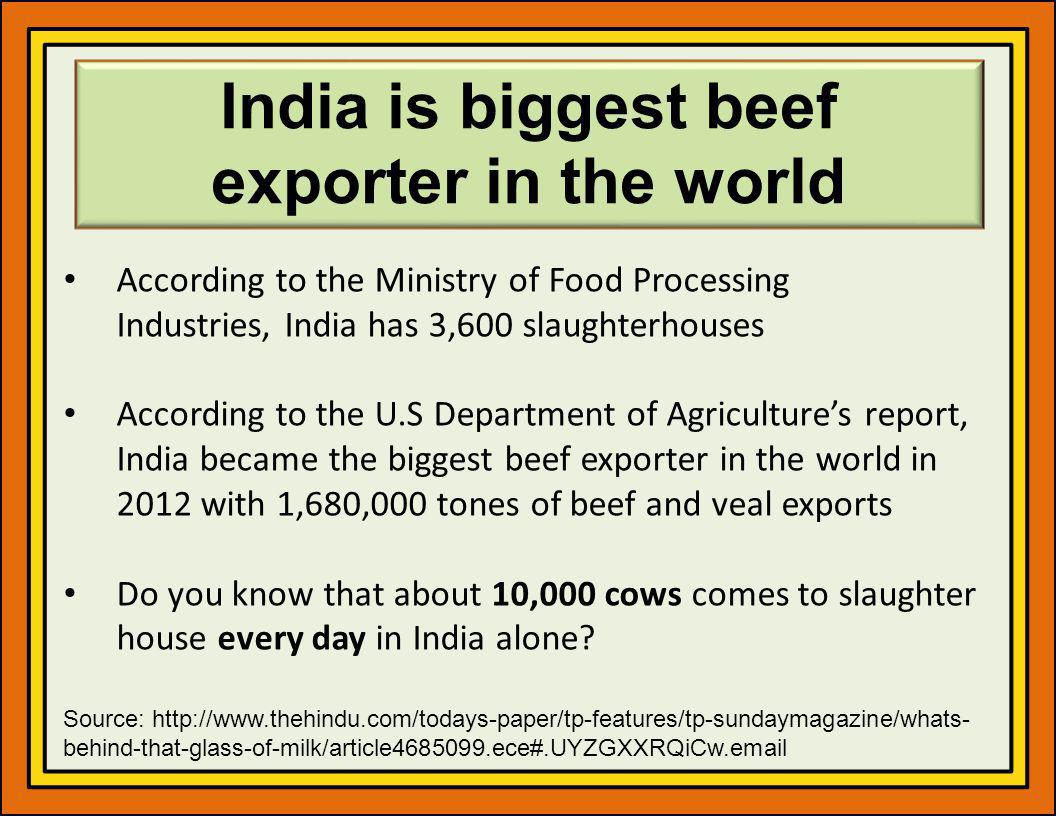 India is biggest beef exporter in the world According to the Ministry of Food Processing Industries, India has 3,600 slaughterhouses According to the U.S Department of Agricultures report, India became the biggest beef exporter in the world in 2012 with 1,680,000 tones of beef and veal exports Do you know that about 10,000 cows comes to slaughter house every day in India alone.