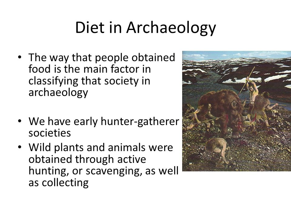 Diet in Archaeology The way that people obtained food is the main factor in classifying that society in archaeology We then have intensification of the use of certain foods Repeat use of a resource in a specific area, such as seasonal dependence on fish, or wild plants