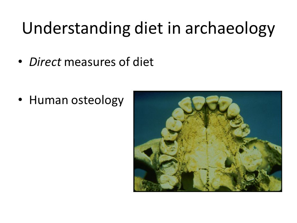 Understanding diet in archaeology Direct measures of diet Human osteology