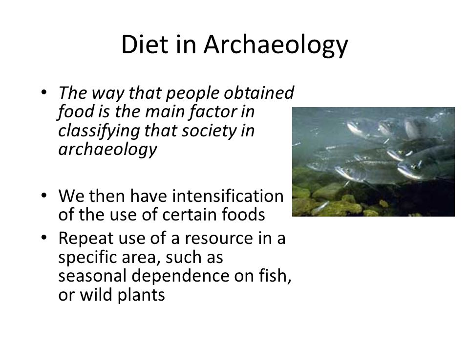 Diet in Archaeology The way that people obtained food is the main factor in classifying that society in archaeology We then have the first steps of the adoption of agriculture and animal husbandry Humans control the access to these resources, as well as the means of reproduction for these organisms