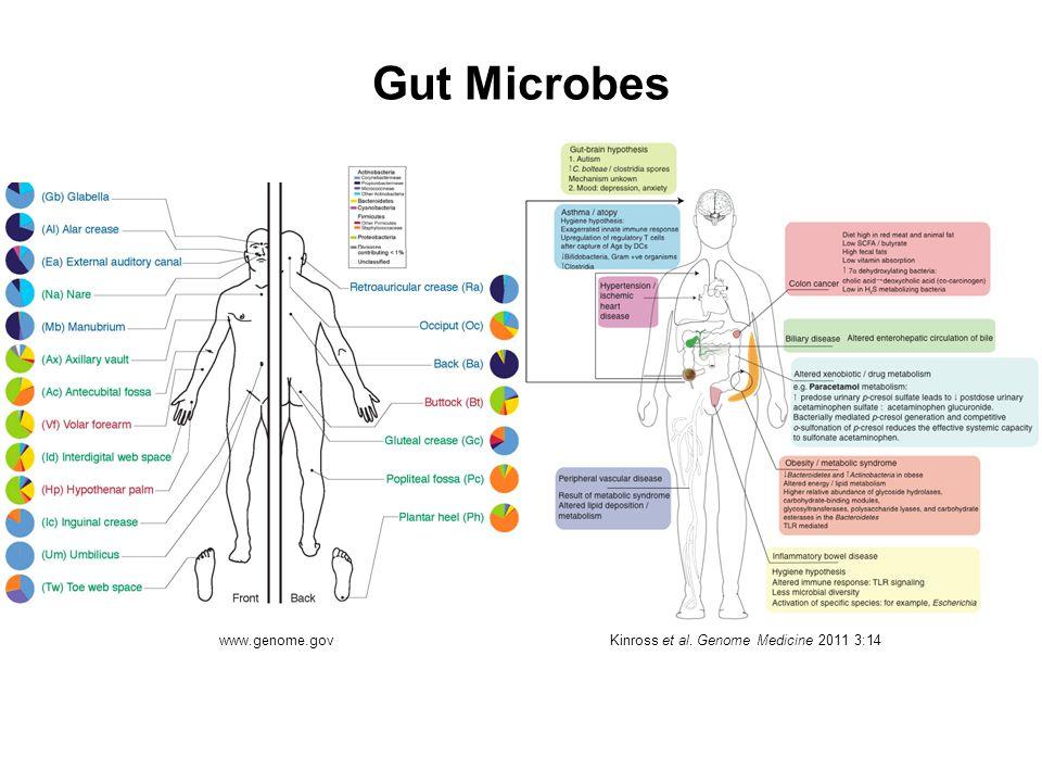 Gut Microbes Kinross et al. Genome Medicine 2011 3:14 www.genome.gov