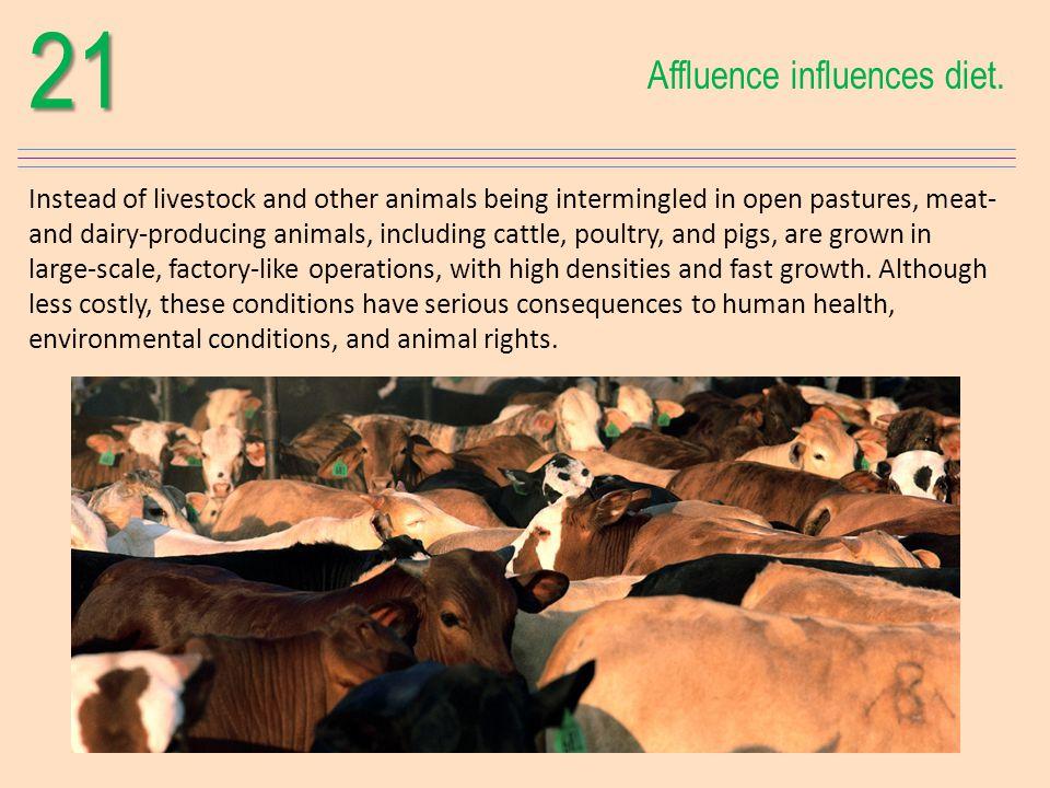 21 Affluence influences diet.