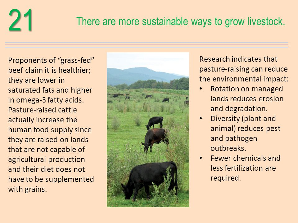 21 There are more sustainable ways to grow livestock.