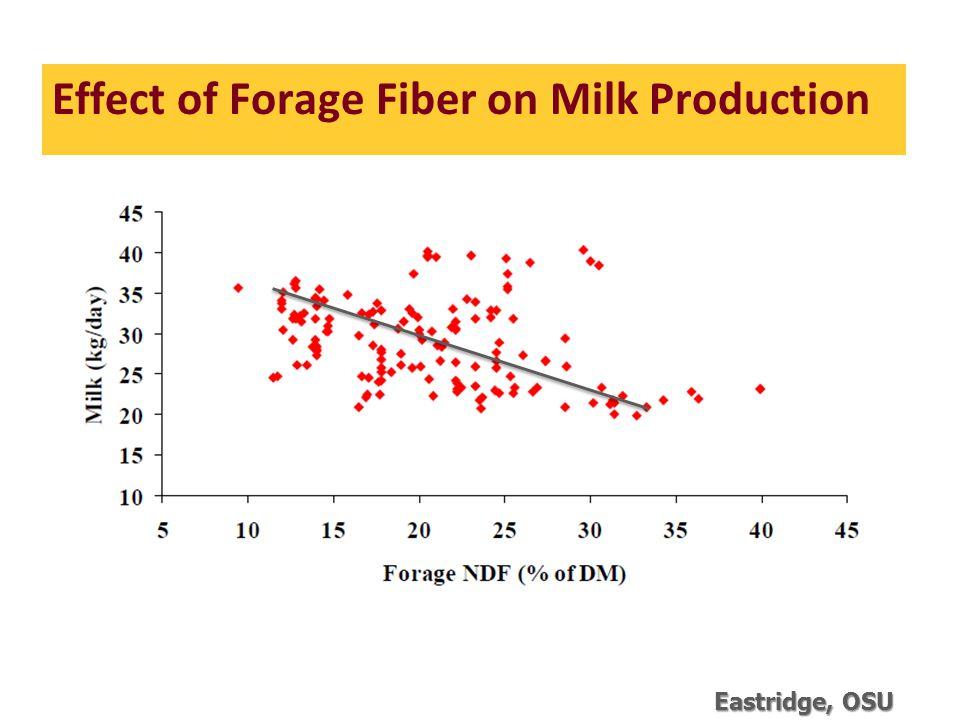Effect of Forage Fiber on Milk Production Eastridge, OSU