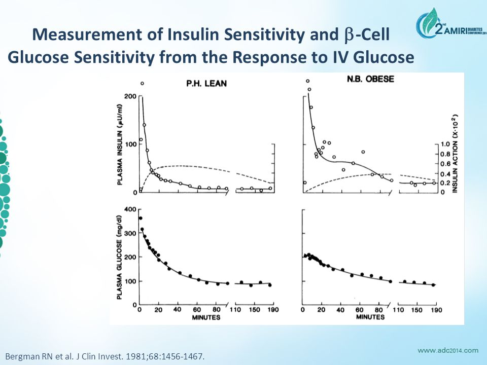 Insulin Resistance is the Core Target for Intervention Type 2 diabetes Hypertension Atherosclerosis Dyslipidemia Endothelial dysfunction Coagulation/Fibrinolytic defects Insulin Resistance Visceral Fat Accumulation (genetic, ethnic) Inflammation (subclinical) Lipotoxicity (increased FFA) Glucose Toxicity (sig.