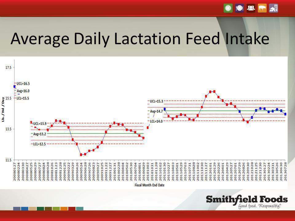Average Daily Lactation Feed Intake