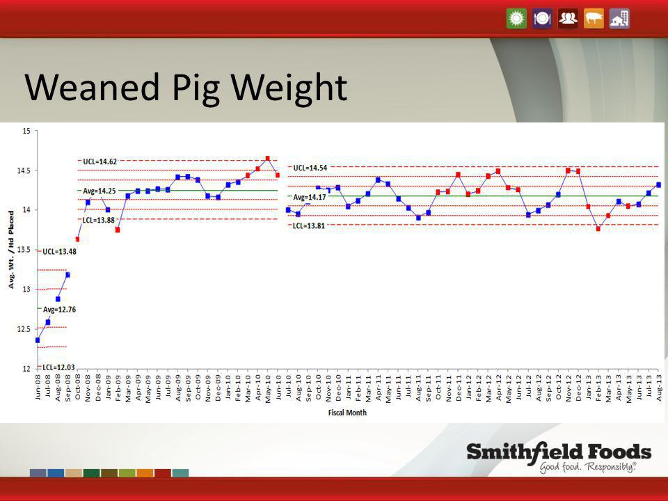 Weaned Pig Weight