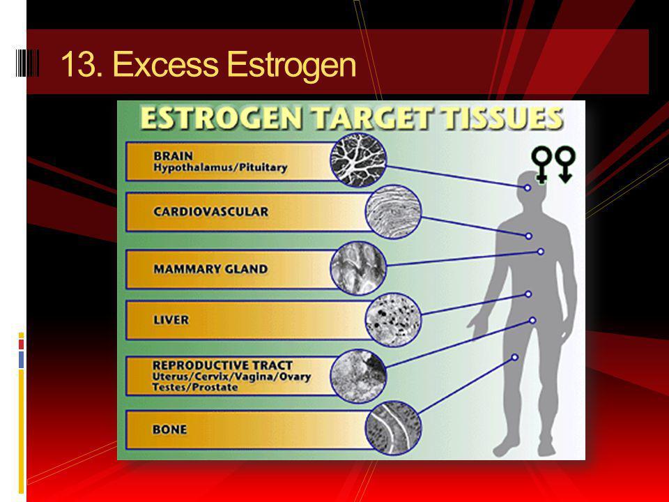 13. Excess Estrogen